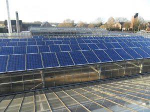 Gewächshaus Straelen 233,2 kWp Eging 240 W 972 Stück // 126,9 kWp Eging 225 W 64 Stück