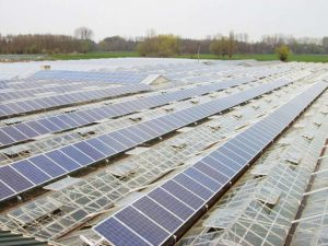Gewächshaus Willich 235,8 kWp Yingli 180 W Module 310 Stück, Trina Solar Module 814 Stück